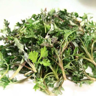 Ekologiczne zioła lecznicze